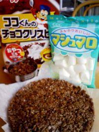 Ricecrispy